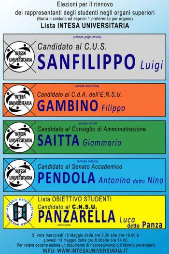 Fac simile elezioni 12-13 Maggio 2010.jpg